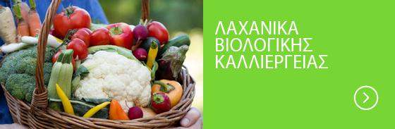 Βιολογικά-Λαχανικά